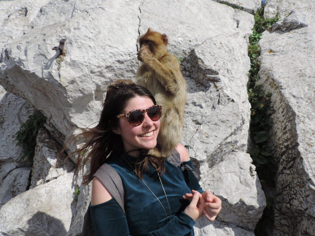 les singes de Gibraltar lors d'une visite pendant mon séjour et semestre ERASMUS